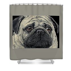 Pugshot Shower Curtain