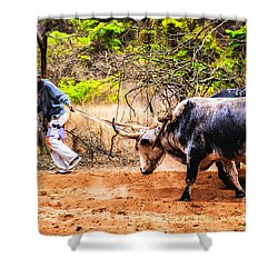 Shower Curtain featuring the photograph Pulling The Beasts by Rick Bragan