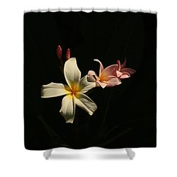 Pulmera Shower Curtain