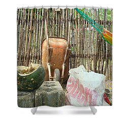 Pumkin 1 Shower Curtain