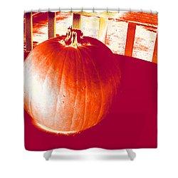 Pumpkin #1 Shower Curtain
