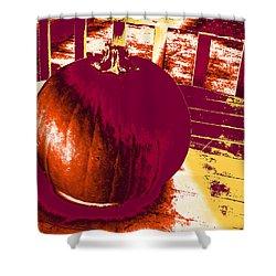 Pumpkin #5 Shower Curtain