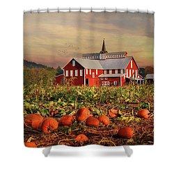 Pumpkin Farm Shower Curtain by Lori Deiter