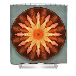 Pumpkin Mandala -  Shower Curtain