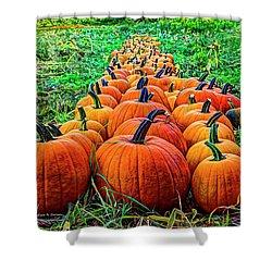 Pumpkin Patch Shower Curtain by Dale R Carlson