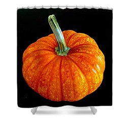 Pumpkin Shower Curtain by Russell Keating