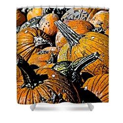 Pumpkin Sale  Shower Curtain