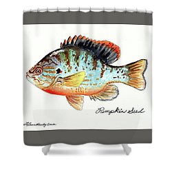 Pumpkin Seed Fish Shower Curtain by LeAnne Sowa