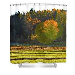 Pumpkin Sunset Shower Curtain