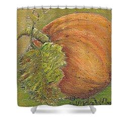 Pumpkin Time Shower Curtain