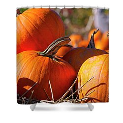 Shower Curtain featuring the photograph Pumpkins 2 by Sharon Talson