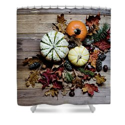 Pumpkins And Leaves Shower Curtain