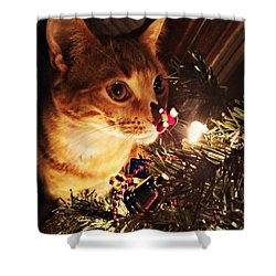 Pumpkin's First Christmas Tree Shower Curtain by Kathy M Krause