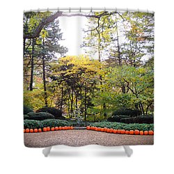 Pumpkins In A Row Shower Curtain by Teresa Schomig