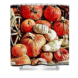 Pumpkins In The Barn Shower Curtain by MaryLee Parker