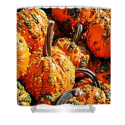 Pumpkins With Warts Shower Curtain