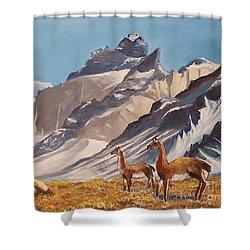 Puna De Atacama Shower Curtain