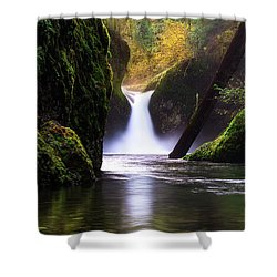 Punch Bowl  Shower Curtain