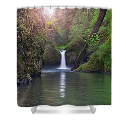 Punch Bowl Falls Shower Curtain by David Gn