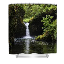 Punchbowl Falls Signed Shower Curtain