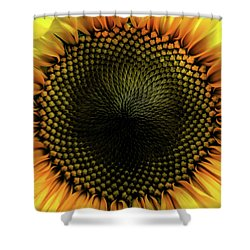 Pupil Shower Curtain