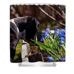 Puppy And Flowers Shower Curtain
