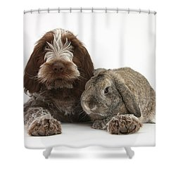 Puppy And Rabbt Shower Curtain by Mark Taylor