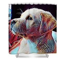 Puppy Dog Shower Curtain by Gary Grayson