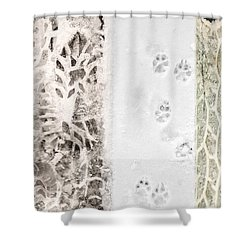 Puppy Prints In The Snow Shower Curtain