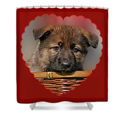 Shower Curtain featuring the photograph Puppy In Red Heart by Sandy Keeton