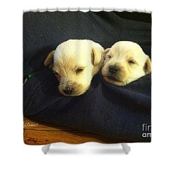 Puppy Love Shower Curtain by MaryLee Parker