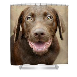 Puppy Power Shower Curtain by Kathy M Krause