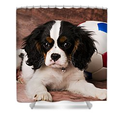 Puppy With Ball Shower Curtain by Garry Gay