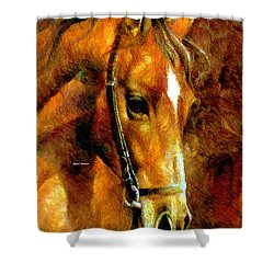 Pure Breed Shower Curtain