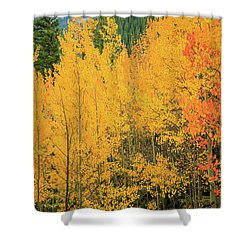 Pure Gold Shower Curtain by David Chandler