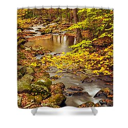 Shower Curtain featuring the photograph Pure Gold by Debbie Green