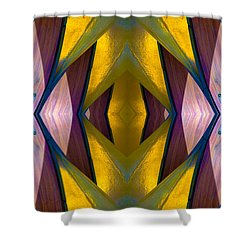 Pure Gold Lincoln Park Wood Pavilion N89 V3 Shower Curtain by Raymond Kunst