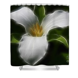 Pure White Trillium Shower Curtain by Deborah Benoit