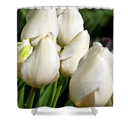 Purity II Shower Curtain by Tamyra Ayles