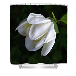 Purity In White Shower Curtain