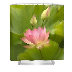 Shower Curtain featuring the photograph Purity Reborn by John Poon