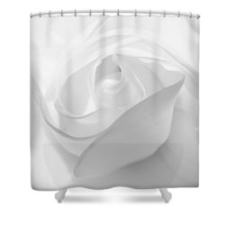 Purity - White Rose Shower Curtain