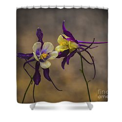 Purple And Gold Shower Curtain