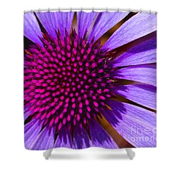 Purple And Pink Daisy Shower Curtain