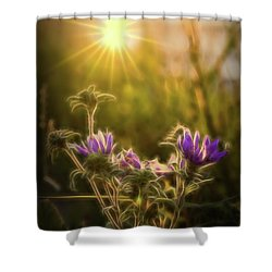 Purple Aster Glow Shower Curtain