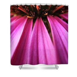 Shower Curtain featuring the photograph Purple Beauty by Eduard Moldoveanu