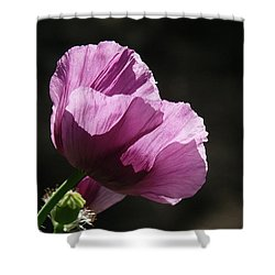Purple Blessing Shower Curtain