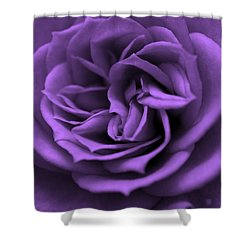 Purple Bliss Shower Curtain