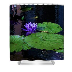 Purple Blue  Lily Shower Curtain by Eric  Schiabor