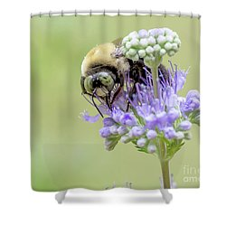Purple Breakfast Shower Curtain